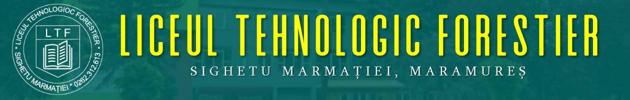Liceul Tehnologic Forestier – Sighetu Marmatiei